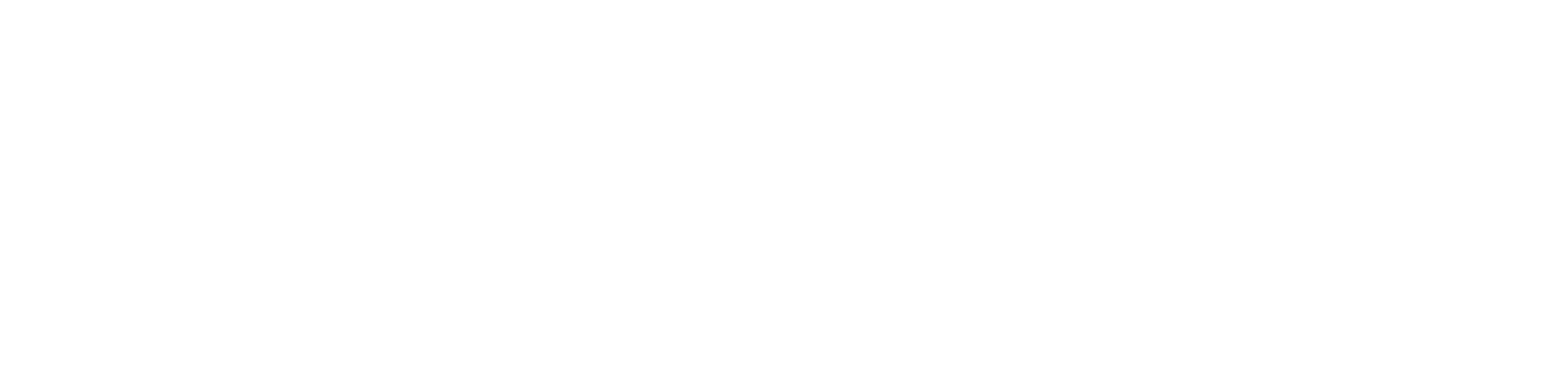 Acoustics Associates Logo White