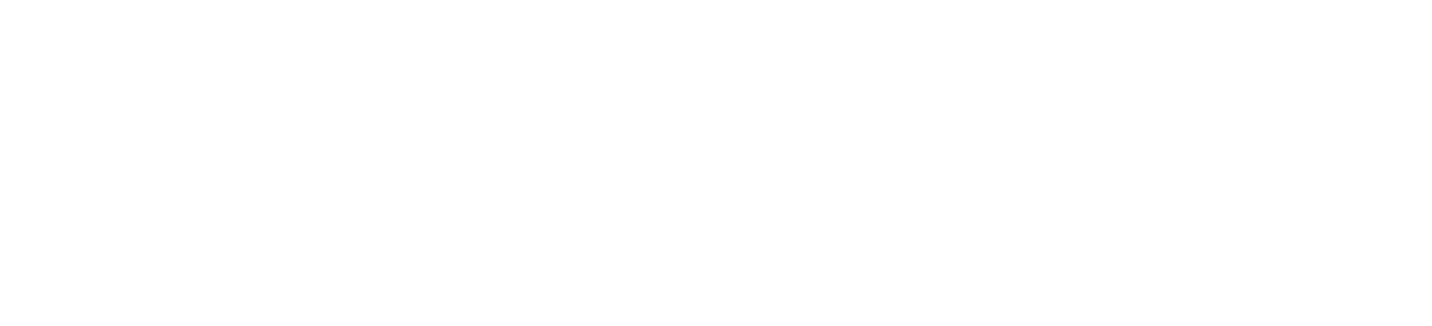 Accoustic Associates Logo