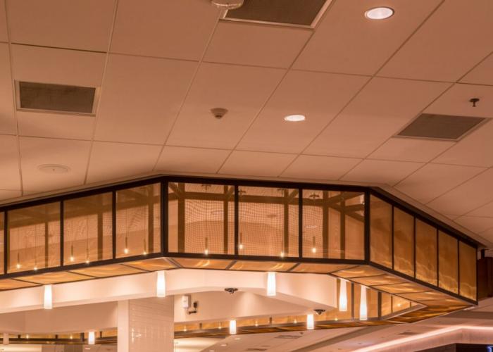 Ceilings Gallery (1)